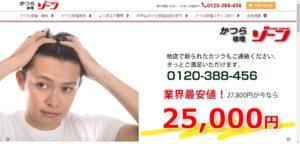かつら修理ゾーンのホームページ