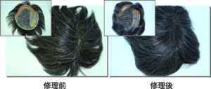 全体的な増毛